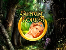 Онлайн аппарат Secret Forest