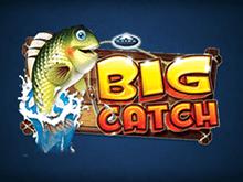 Прибыльный слот Big Catch