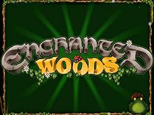 Игровой слот Enchanted Woods